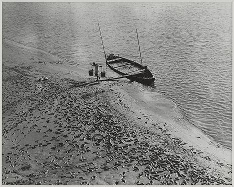 〈水肥船〉