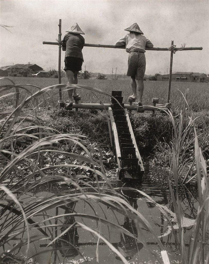 Treading the Watermill, 1948