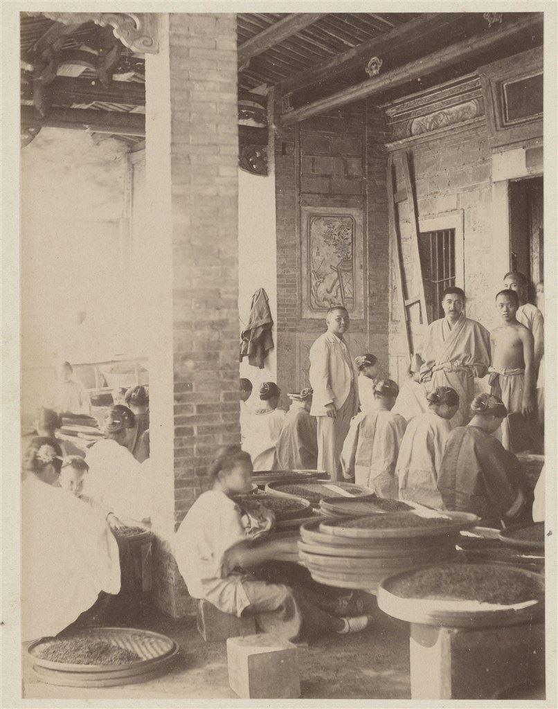 十九世紀蛋白版相紙(16):臺北大稻埕