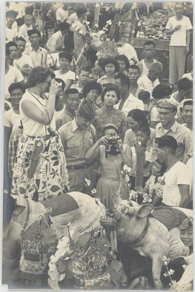 三峽豬公系列-21 1950s